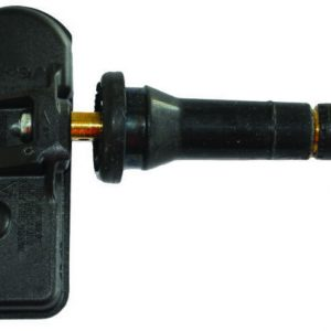 Schrader-3041 Snap-in HS fixed 20deg angle Renault